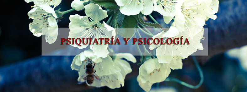 Instituto Chileno de Psicoterapia Breve